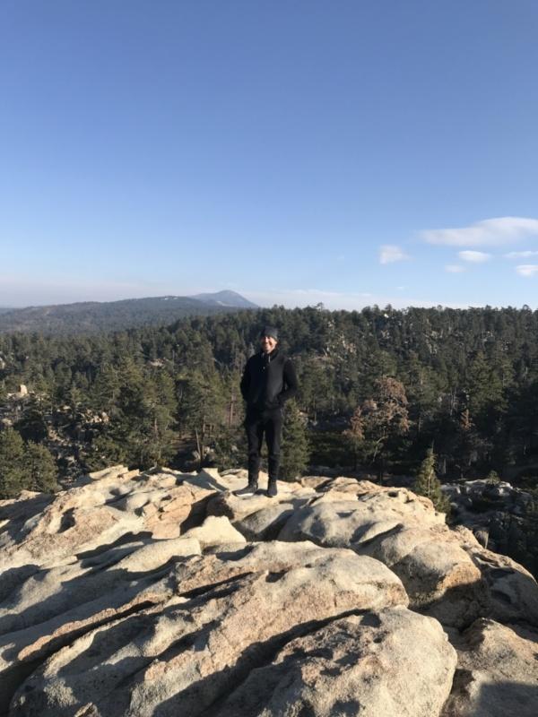 Robin_mountain_big_Bear